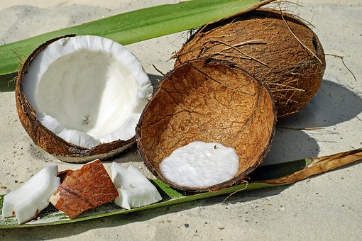 coconut-2637727__340